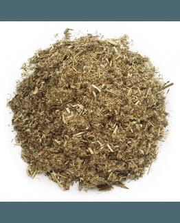Planta de artemisa