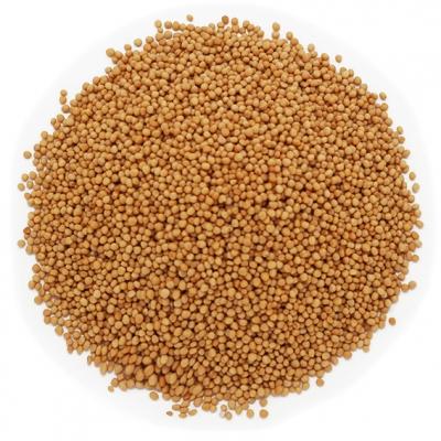 Semillas de mostaza amarilla