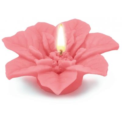 Molde velas flor de navidad