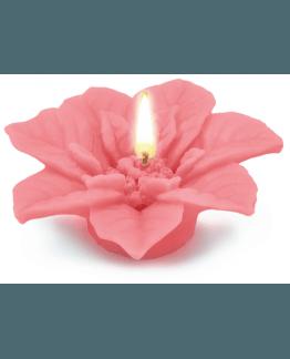 Forma para fazer velas, flor de natal