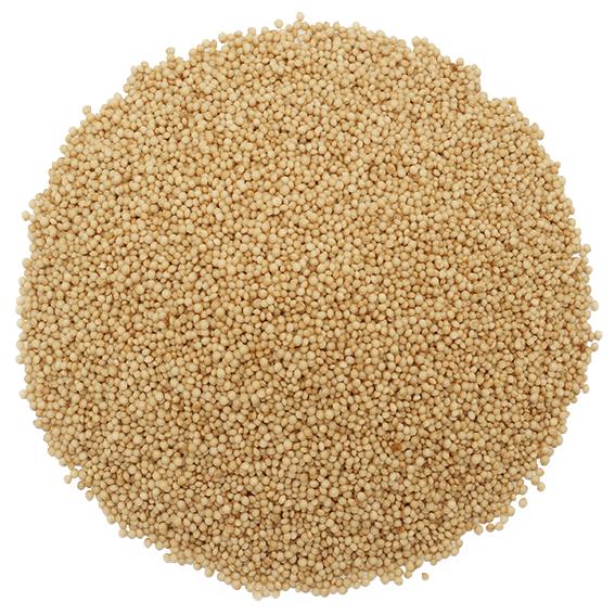 Exfoliante semillas amaranto