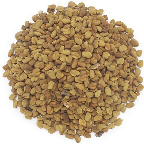 Alforva sementes