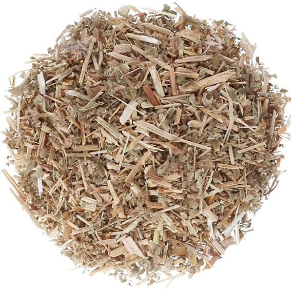 Agrimonia planta
