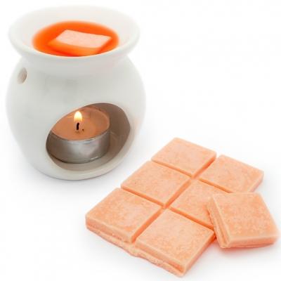 Molde para fazer tablete de cera o parafina perfumada