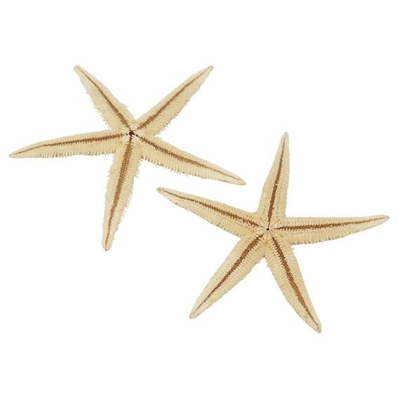 Estrela do mar filipina 10-12 cm