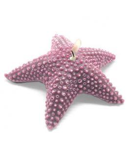 Estrela Marinha Esponjosa Grande, molde para fazer velas