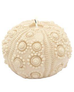 Molde para velas, Ouriço-do-Mar.