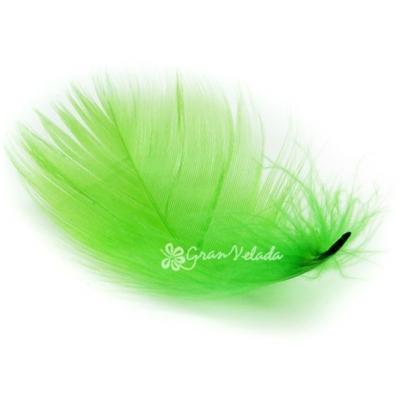 Penas Decorativas Marabú, cor verde.