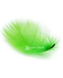 Plumas de marabu verdes