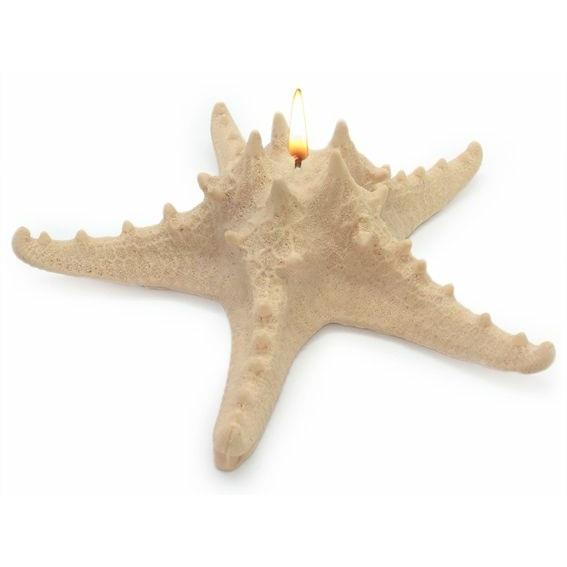 Molde Estrela Marinha Horn Gigante